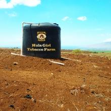 Tobacco Farm tank